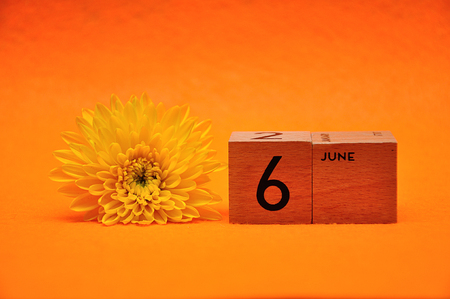 6 June on wooden blocks with a yellow daisy on an orange background