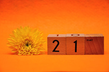 21 May on wooden blocks with a yellow daisy on an orange background Reklamní fotografie