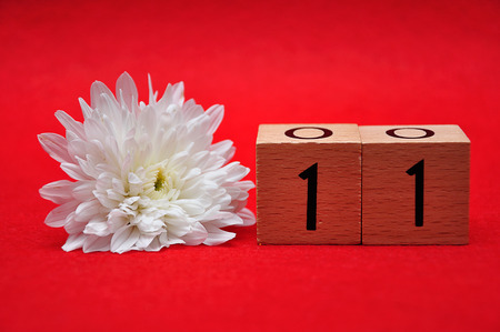 Number eleven with a white daisy on a red background