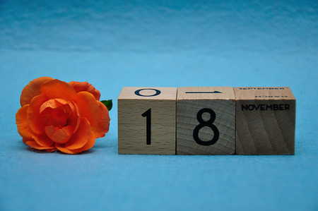 18 November on wooden blocks with an orange rose on a blue background 写真素材