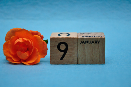 9 January on wooden blocks with an orange rose on a blue background