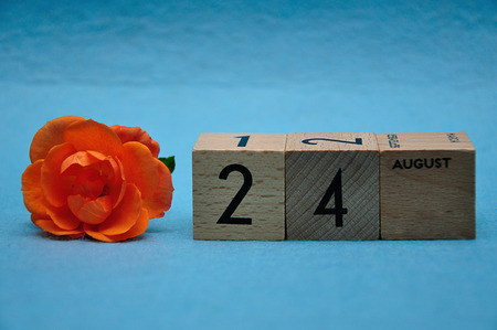 24 August on wooden blocks with an orange rose on a blue background 写真素材