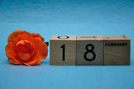 18 February on wooden blocks with an orange rose on a blue background