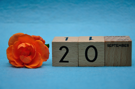 20 September on wooden blocks with an orange rose on a blue background