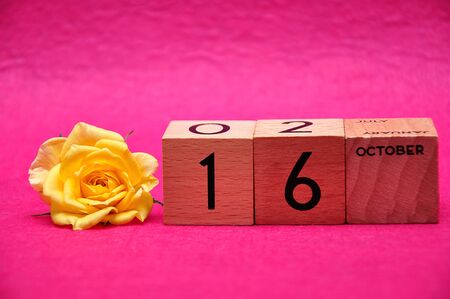 16 November on wooden blocks with a yellow rose on a pink background