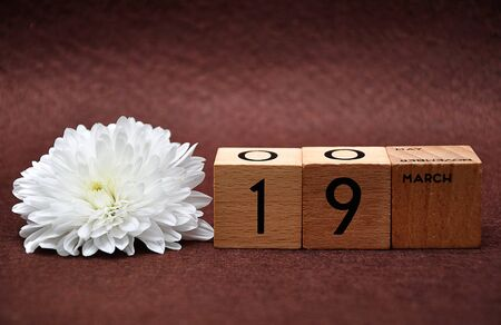 19 March on wooden blocks with a white aster on a brown background