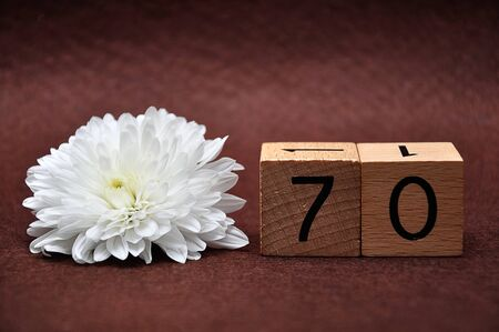 Number seventy with a white aster on a brown background 免版税图像 - 127294359