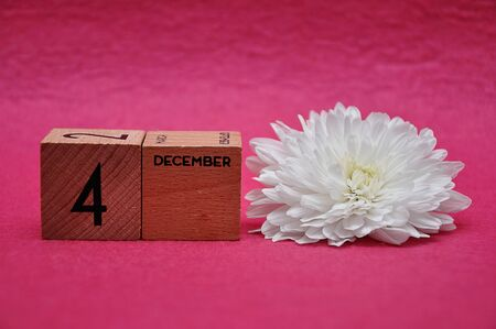 4 December on wooden blocks with a white aster on a pink background