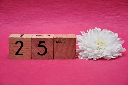 25 April on wooden blocks with a white aster on a pink background