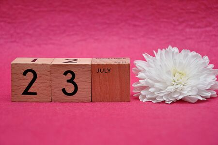 23 July on wooden blocks with a white aster on a pink background 写真素材