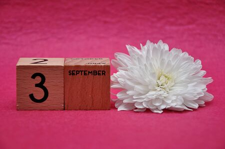 3 September on wooden blocks with a white aster on a pink background 写真素材
