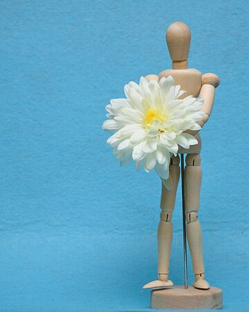 A wooden mannequin display with a white aster against a blue background