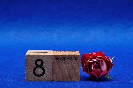 8 November on wooden blocks with a red rose on a blue background Stock Photo