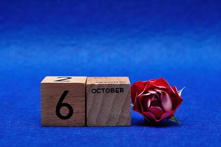 6 October on wooden blocks with a red rose on a blue background Stock Photo
