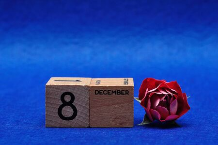 8 December on wooden blocks with a red rose on a blue background