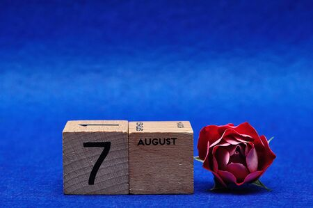 7 August on wooden blocks with a red rose on a blue background Stock Photo