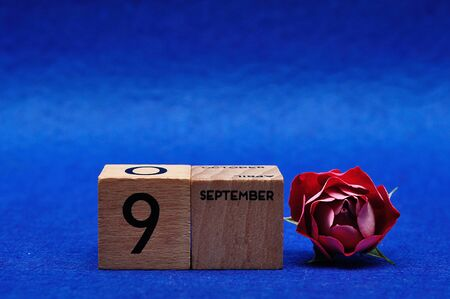 9 September on wooden blocks with a red rose on a blue background