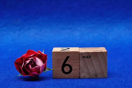 6 May on wooden blocks with a red rose on a blue background
