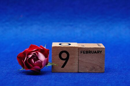 9 February on wooden blocks with a red rose on a blue background