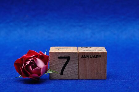 7 January on wooden blocks with a red rose on a blue background Stock Photo