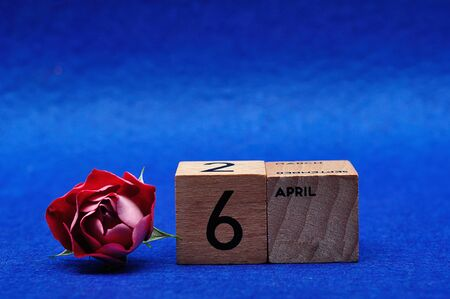 6 April on wooden blocks with a red rose on a blue background