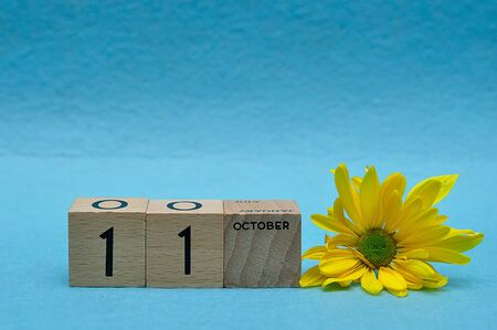 11 October on wooden blocks with a yellow aster on a blue background