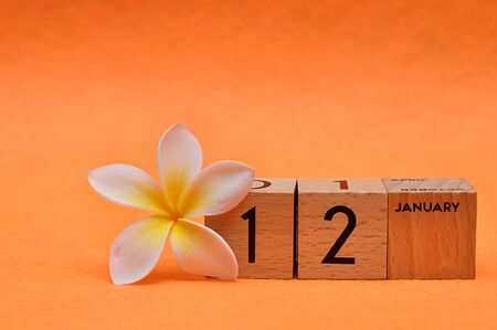 12 January on wooden blocks with a Frangipani flower on an orange background Stock Photo