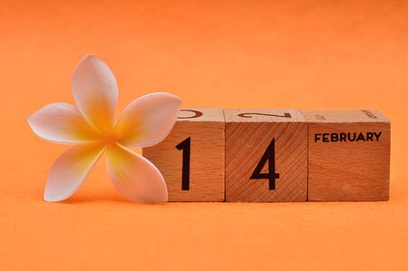14 February on wooden blocks with a Frangipani flower on an orange background