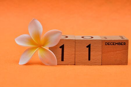 11 December on wooden blocks with a Frangipani flower on an orange background