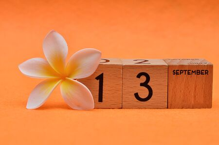 13 September on wooden blocks with a Frangipani flower on an orange background Stock Photo