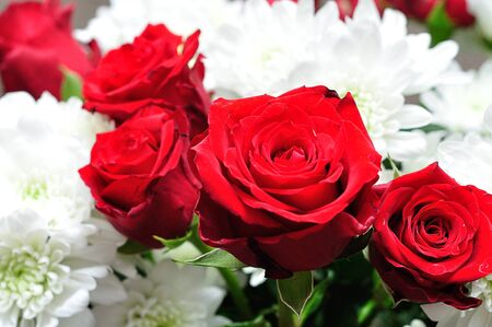 A bouquet of fresh red roses and white dahlias