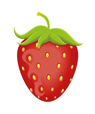 Strawberry vector illustration Illustration