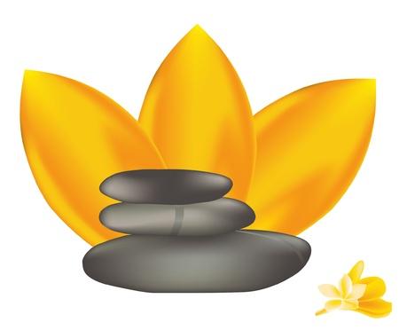 Vector de piedras de spa con frangipani.