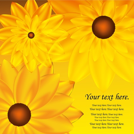 Abstract vector sunflower background. EPS10  Vector