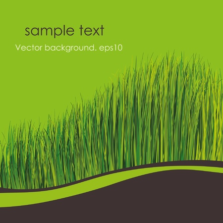 Spring background. Green grass. Place for your text Stock Vector - 9849161