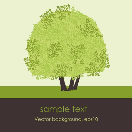 landscape painting: Card with stylized vector tree Illustration
