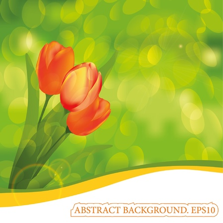 Spring background. Tulips. Place for your text Vector