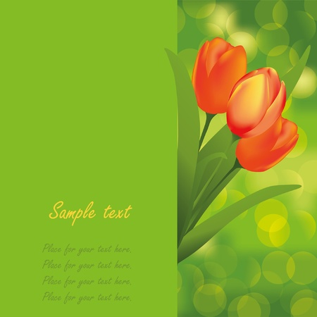 Spring background. Tulips. Place for your text Stock Vector - 9849170