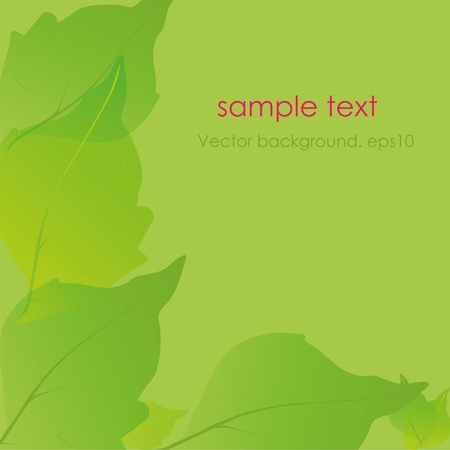 Green background. Leaves. Place for your text Vector