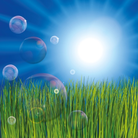 soapy water: Bubbles in the grass.  Illustration