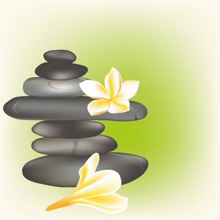spa stones with frangipani Vector
