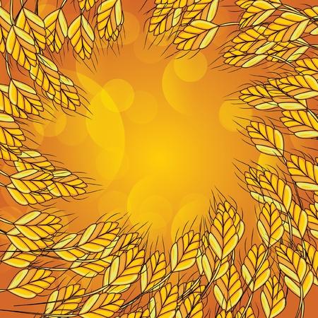 golden field: illustration. Wheat background Illustration