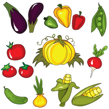 Set of vegetables isolated on the white background. Design elements Vector