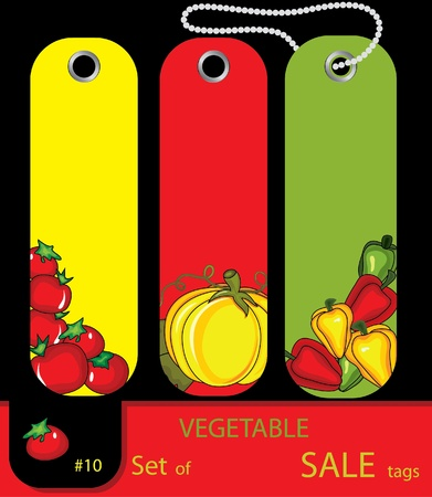 Set of  sale vagetables autumn tags with tomatos, peppers, pumpkin. Set #10 Vector
