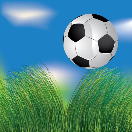 Football ball in the grass on the blue sky background Stock Vector - 10227212