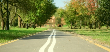 road autumnal: Bicycle road in autumnal  park