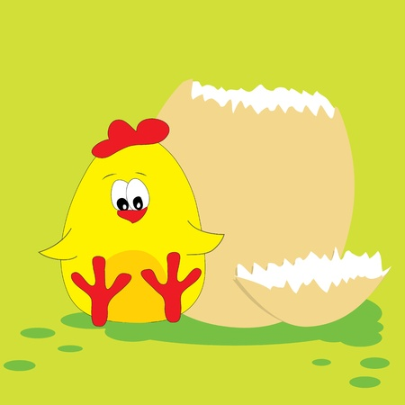 Cute chicken. Vector illustration. Vector