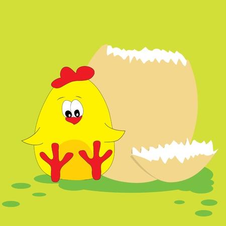 Cute chicken. Vector illustration. Vector