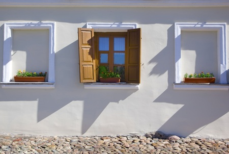 Window with flower on the white wall photo