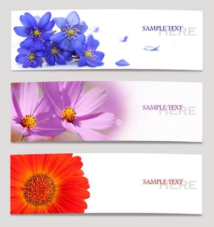 Design background of spring flowers brochure  template photo